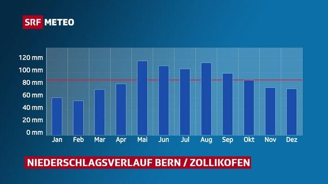 Niederschlagsverlauf Bern Zollikofen