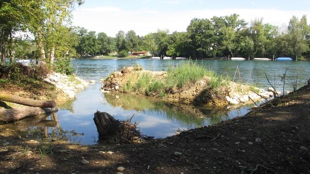 Ein Teich für Jungfische mit Auslauf in den Rhein.