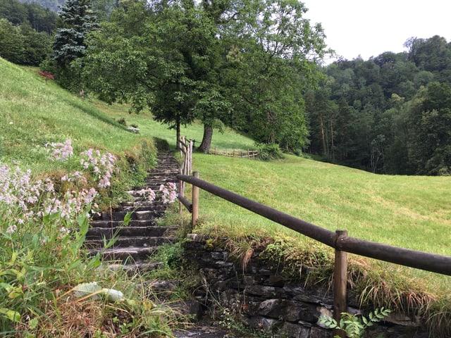 Weg der Schweiz