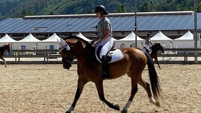 Reiterin reitet auf Pferd