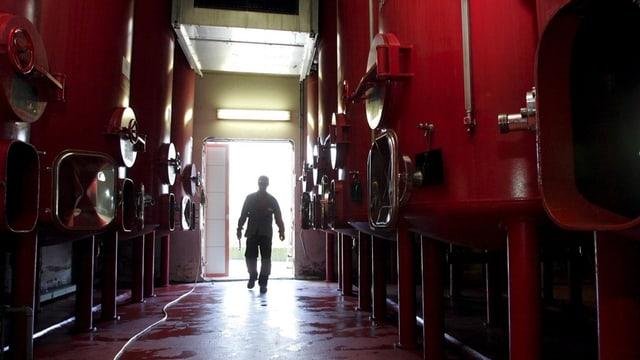 Die Weintanks von Provins.