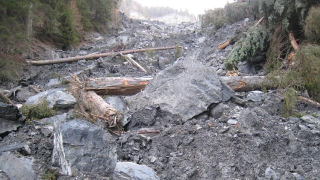 Material da la bova en la Val Parghera l'onn 2013