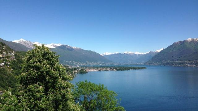Blick auf den Lago Maggiore. Im Hintergrund verschneite Alpengipfel, darüber blauer, wolkenloser Himmel.