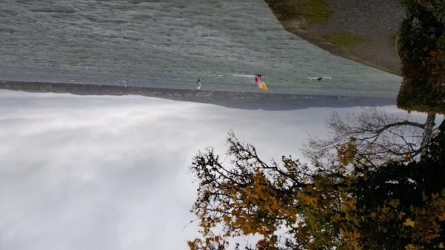 Surfer auf dem Bodensee