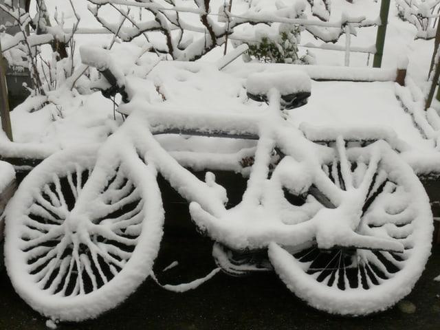 Eingeschneites Fahrrad.