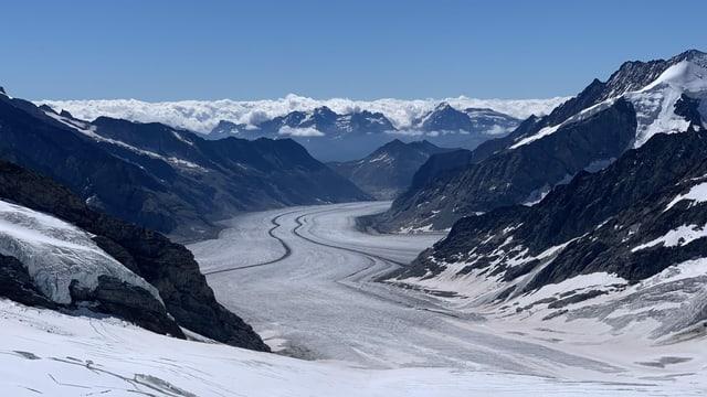 Blick vom Jungfraujoch auf den weitgehend ausgeaperten Aletschgletscher.