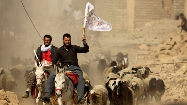 Zivilisten auf Eseln