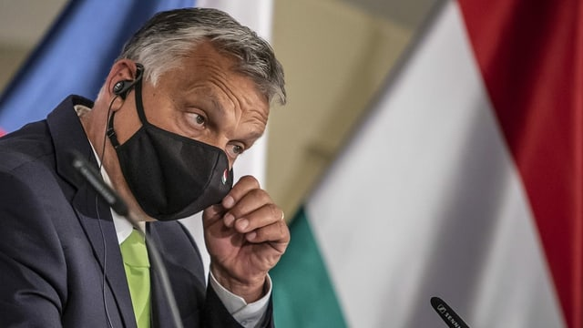 Ungarn dürfte das NGO-Gesetz kippen