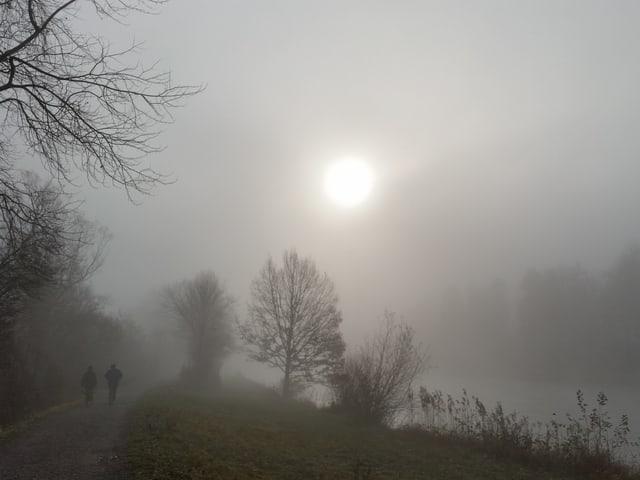 Eine Landschaft mit Bäumen und zwei Fussgängern liegt im dichten Nebel. Die Sonne drückt jedoch durch die Nebelschicht.