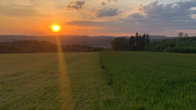 Milder Verlauf der Pandemie im Aargau: Warum?