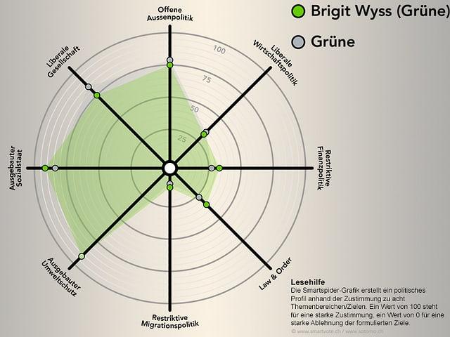 Smartspider von Brigit Wyss.