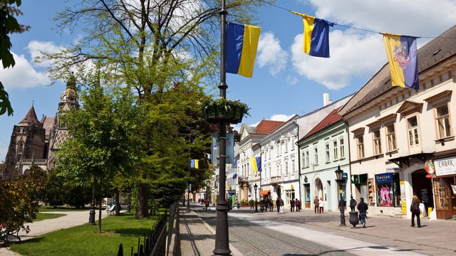 Dom, Altstadthäuser, gelb-blaue Fahnen über der Strasse.