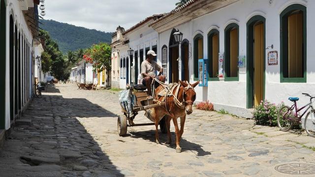 Ein Pferdekarren in einem kleinen Brasilianischen Dorf.