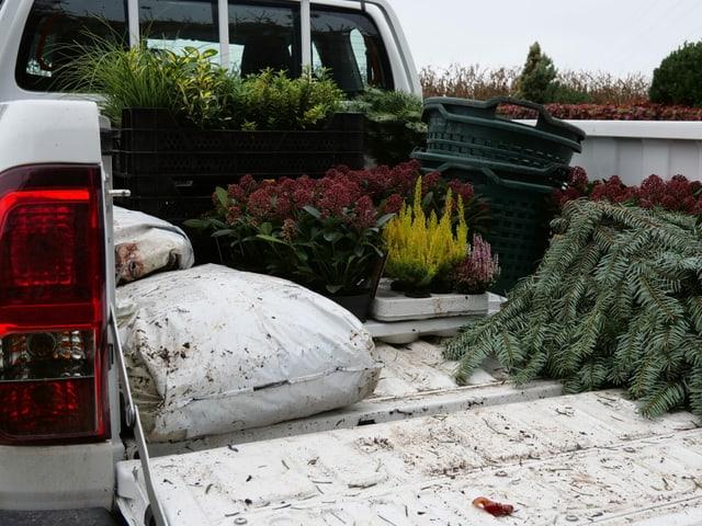 Ein Auto mit Blumen und Kies auf der Ladefläche