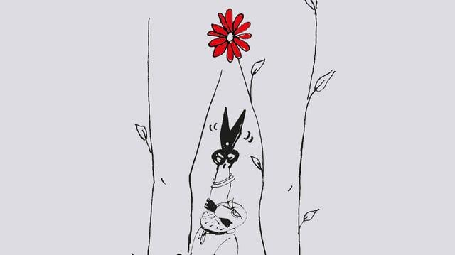 Auf einer Karikatur Ein steht ein Mann mit einer Schere zwischen den Beinen einer Frau. Ihr Genitalbereich wird von einer roten Blume überdeckt.
