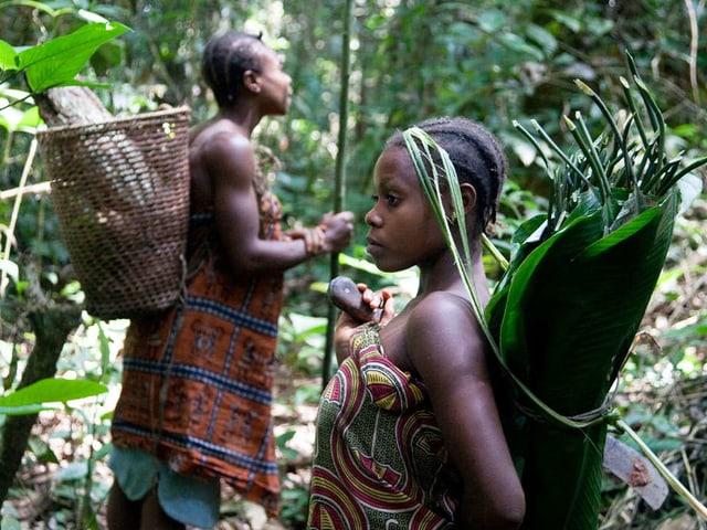 Zwei Baka-Frauen im Wald tragen in Blätter eingehüllte Pflanzen.