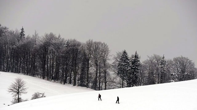 Schneeschuhwanderer in verschneiter Landschaft.