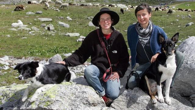 Zwei junge Frauen mit zwei Hunden posieren auf einem Stein, im Hintergrund Schafe.