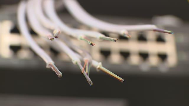 Las lingias da fibra da vaider