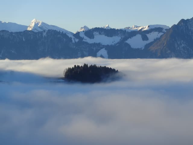 Blick auf ein Nebelmeer, aus dem ein paar Bäume herausragen, dahinter die Berner Berge.