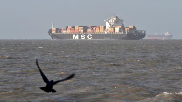 Eine fliegende Taube im Vordergrund, im Hintergrund das Meer mit einem Containerschiff.