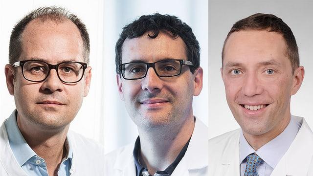 Portraitbilder der Experten