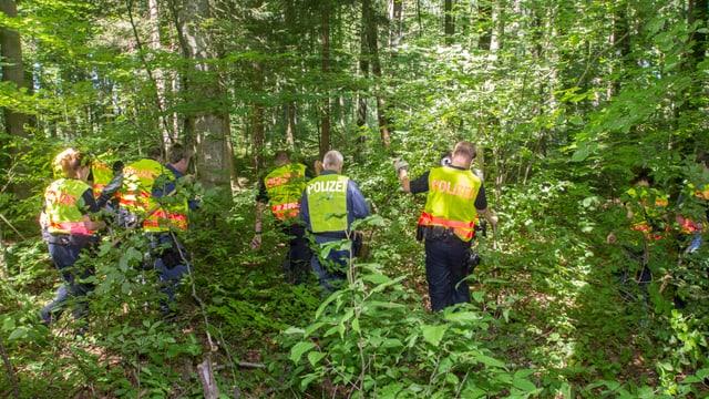 Polizisten suchen im Wald nach Spuren.