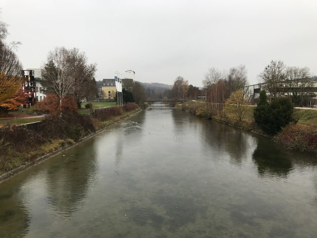 In der Töss hat es sehr wenig Wasser, der Fluss fliesst ruhig.