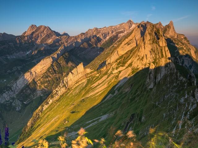 Die Berggipfel im Morgenlicht.
