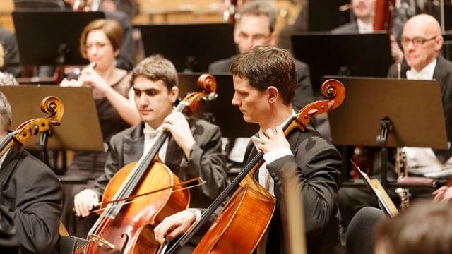 Das Aargauer Symphonieorchester «Argovia Philharmonic» konnte letzte Saison sehr viele Besucher anlocken.