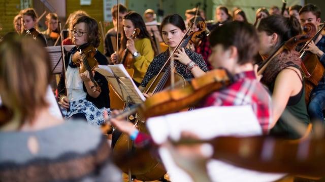 Musiker spielen in einem Orchester.