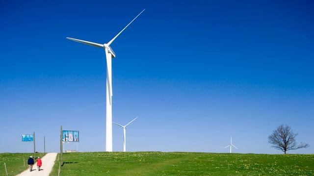Die Turbinen auf dem Mont Crosin.