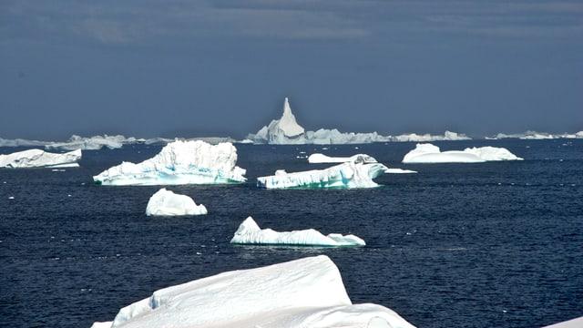 Zahlreiche Eisbrocken treiben im Meer vor der Antarktischen Halbinsel.