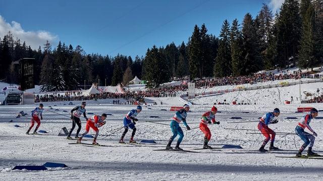Langläufer messen sich an der Tour de Ski auf der Lenzerheide.