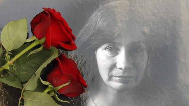 Rote Rosen liegen auf dem Foto Natalia Estemirowa