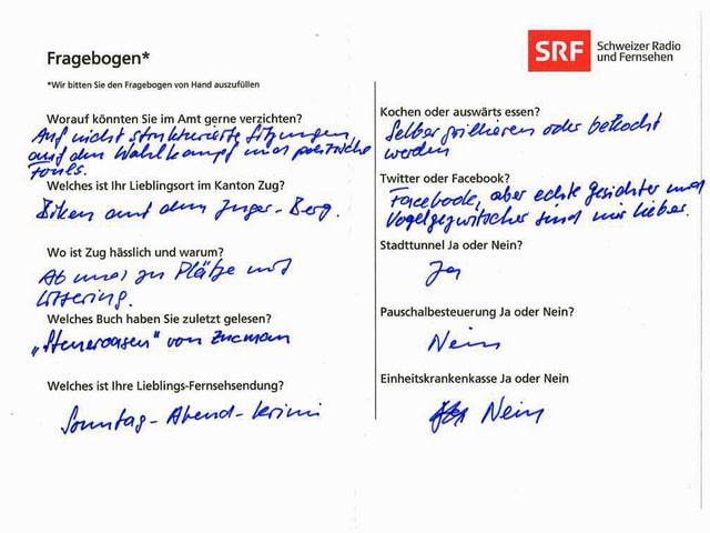 Der von Beat Villiger ausgefüllte Fragebogen.