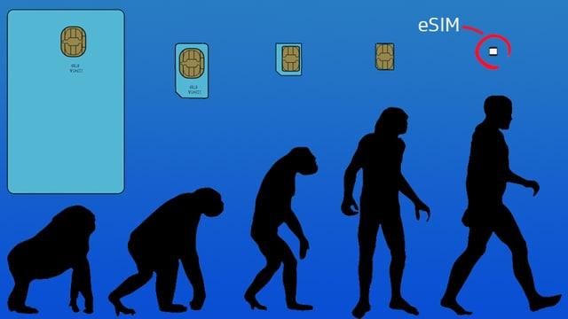 Oben SIM-Karten, die immer kleiner werden, unten der Mensch, wie er sich vom Affen zum Homo Sapiens entwickelt.