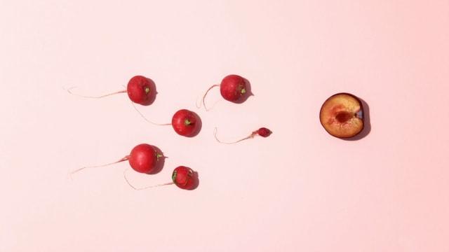 Ein saftiger halber Pfirsich und rote Radieschen versinnbildlichen Spermien, die in eine Vagina wollen