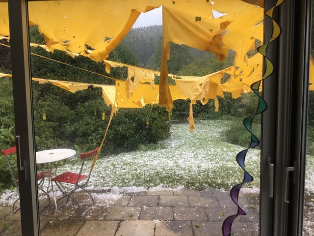 Gelbe Fetzen, welche an Schnüne hangen in einem hagelübersäten Garten.