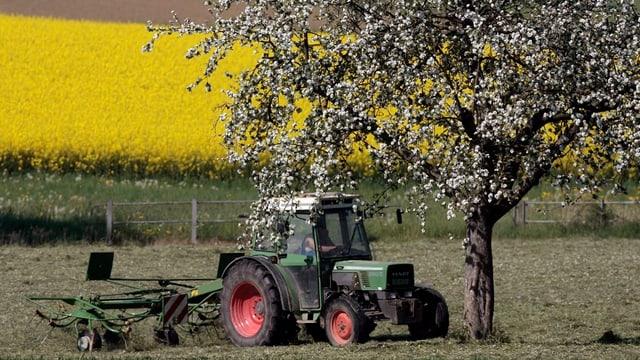 Ein Traktor bei Heuarbeiten im Kanton Thurgau