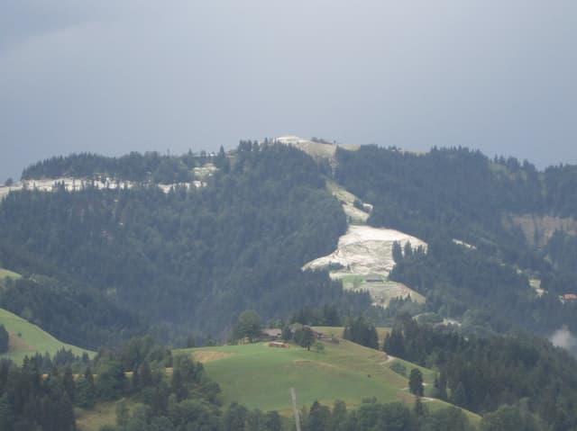 Grüne Hügellandschaft mit Wiesen und Wäldern. Ein Teil der Wiesen ist weiss vom ganzen Hagel.