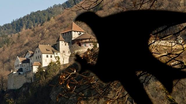 Das Schloss Vaduz.