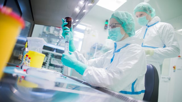 Laboranten bei der Arbeit