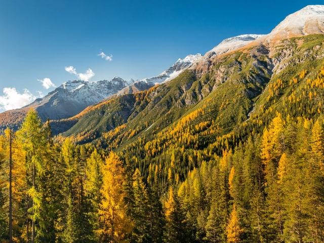 Bergpanorama unter blauem Himmel