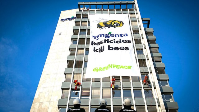 Aufnahme der Fassade des Syngenta-Firmensitzes in Basel. Ein Greenpeace-Transparent hängt an der Fassade herunter. Darauf zu lesen ist: «Syngenta pesticides kill bees».
