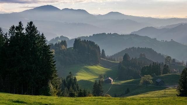 Blick in ein Tal vor einem Bergpanorama.
