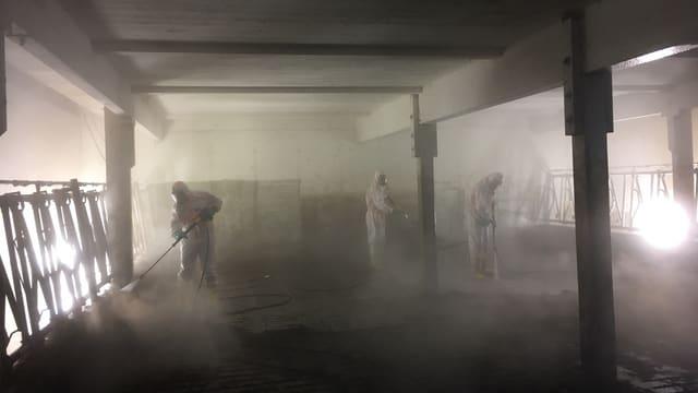 In Schutzanzügen desinfizieren Mitglieder der neuen SChaffhauser Seuchengruppe einen Kuhstall.
