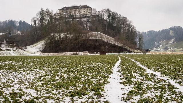 Die bernische Strafanstalt Thorberg thront auf dem Felsen im Krauchthal.