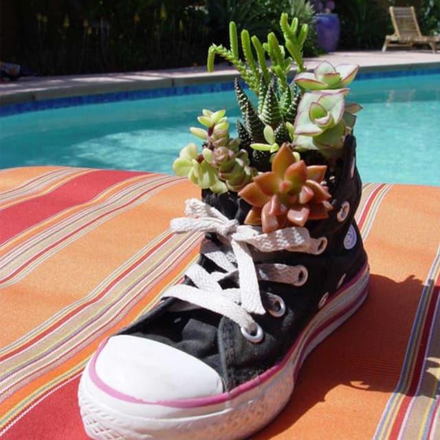 Bepflanze deinen Sneaker!