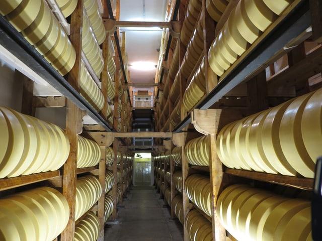Ein Käsekeller mit Gestellen rechts und links gefüllt mit grossen Käselaibern.